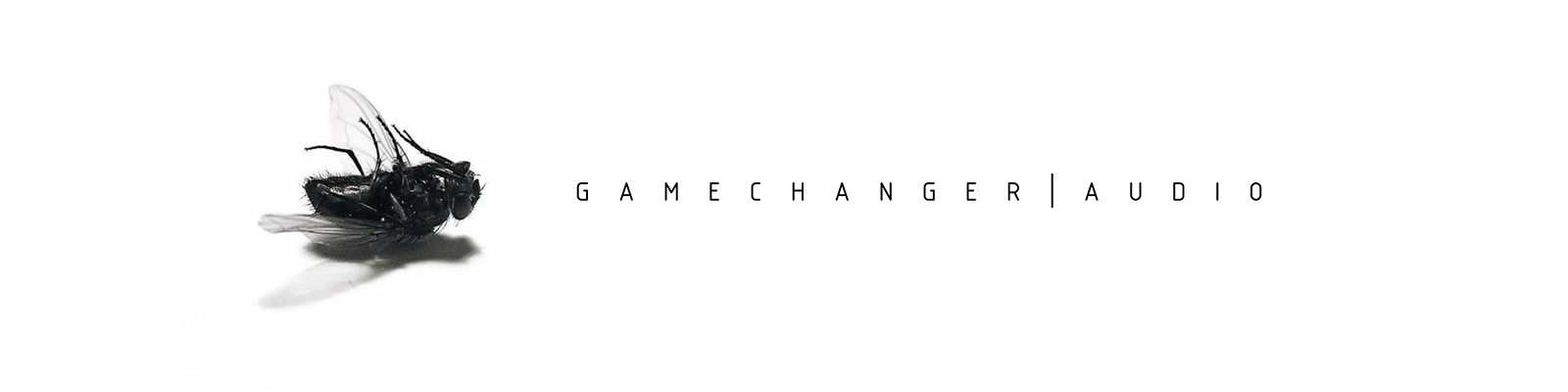gamecahnger-1600x-400.jpg